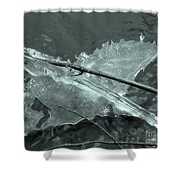 Shower Curtain featuring the photograph Ice-bird On The River by Nina Silver