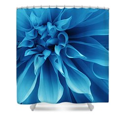Ice Blue Dahlia Shower Curtain