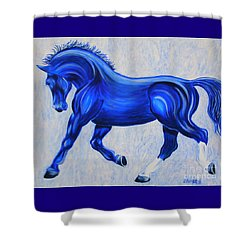 Ice Blue Shower Curtain