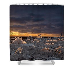 Ice Fields Shower Curtain