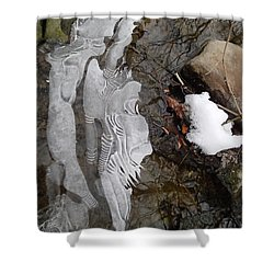 Ice Flow Shower Curtain by Robert Nickologianis