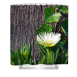 Ice Flower With Vine Shower Curtain