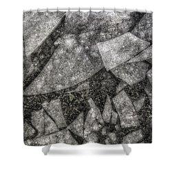 Ice Fractal Shower Curtain by Jason Politte