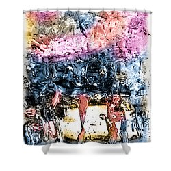 Ice Number Four Shower Curtain by Bob Orsillo