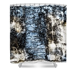 Ice Number Two Shower Curtain by Bob Orsillo