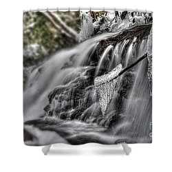 Ice On A Stick Shower Curtain by Dan Friend