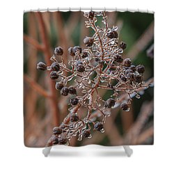 Ice On Berries Shower Curtain