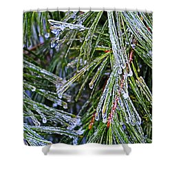 Ice On Pine Needles  Shower Curtain