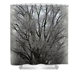 Ice Sculpture Shower Curtain
