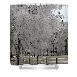 Ice Trees Shower Curtain
