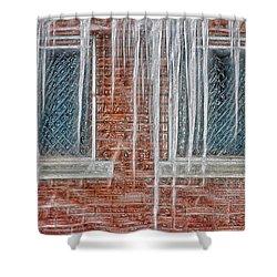 Iced Over Shower Curtain by Steve Ohlsen