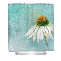 Iced Shower Curtain