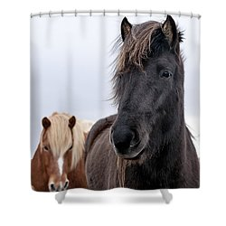 Iceland Horses Shower Curtain by Mike Santis
