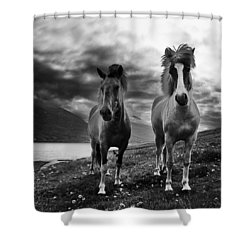 Shower Curtain featuring the photograph Icelandic Horses by Frodi Brinks