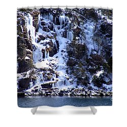 Icicle House Shower Curtain by Barbara Griffin