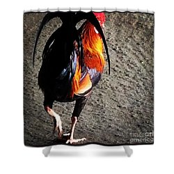 Shower Curtain featuring the photograph Iconic Kauai by Roselynne Broussard