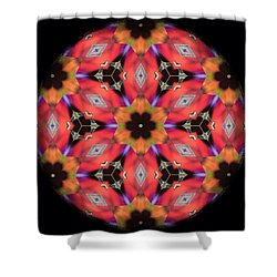 iCube Mandala Shower Curtain