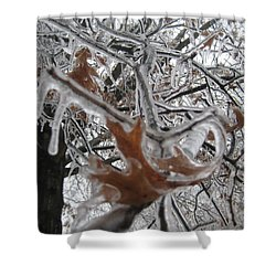 Icy Beckoning Shower Curtain