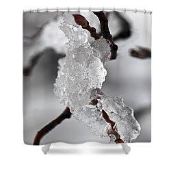 Icy Elegance Shower Curtain by Elena Elisseeva