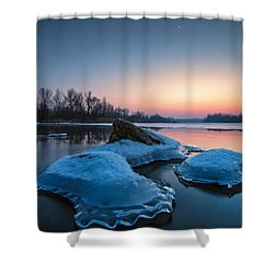Icy Jellyfish Shower Curtain by Davorin Mance