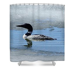 Icy Loon Shower Curtain