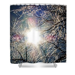 Icy Web Shower Curtain
