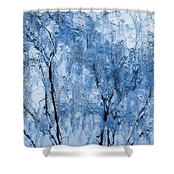 Icy Winter Shower Curtain by Kume Bryant