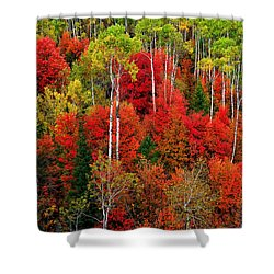 Idaho Autumn Shower Curtain