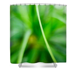 Identity Shower Curtain by Syed Aqueel