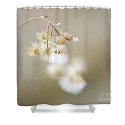 If Only I Am ..... Shower Curtain