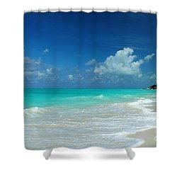 Iguana Island Caribbean Shower Curtain