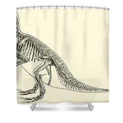 Iguanodon Shower Curtain
