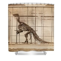 Iguanodon Skeleton Mesozoic Dinosaur Shower Curtain by Science Source