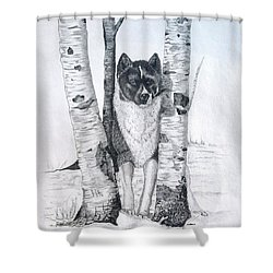 Ihasa In The Woods Shower Curtain by Joette Snyder