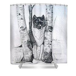 Ihasa In The Woods Shower Curtain
