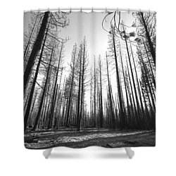 IIi IIi II IIII II IIi Shower Curtain