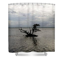 Ikebana Sunset Shower Curtain