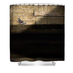Il Piccolo Guardiano Shower Curtain by Bob Orsillo