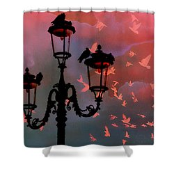 Shower Curtain featuring the photograph Il Volo by Micki Findlay