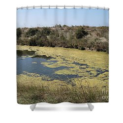 Ile De Re - Marshes Shower Curtain by HEVi FineArt