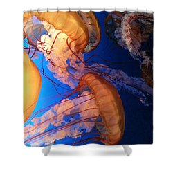 Shower Curtain featuring the photograph I'll Take Jelly With That by Caryl J Bohn
