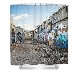 Shower Curtain featuring the photograph Illegal Art Museum by Steven Santamour