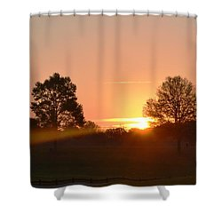 Shower Curtain featuring the photograph Illuminated by Carlee Ojeda