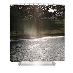 Illuminated Tree Shower Curtain