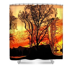 Shower Curtain featuring the photograph Illusion by Joyce Dickens