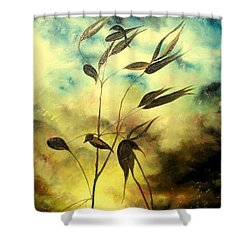 Ilusion Shower Curtain