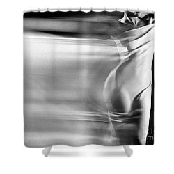 Im-2 Shower Curtain