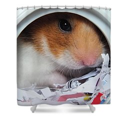 Shower Curtain featuring the photograph I'm Keeping My Eye On You by Vicki Spindler