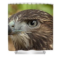 I'm Watching You Shower Curtain by Randy Hall