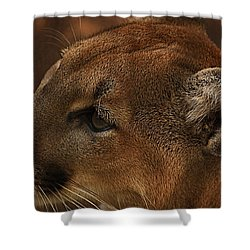 I'm Watching You... Shower Curtain by Tammy Schneider